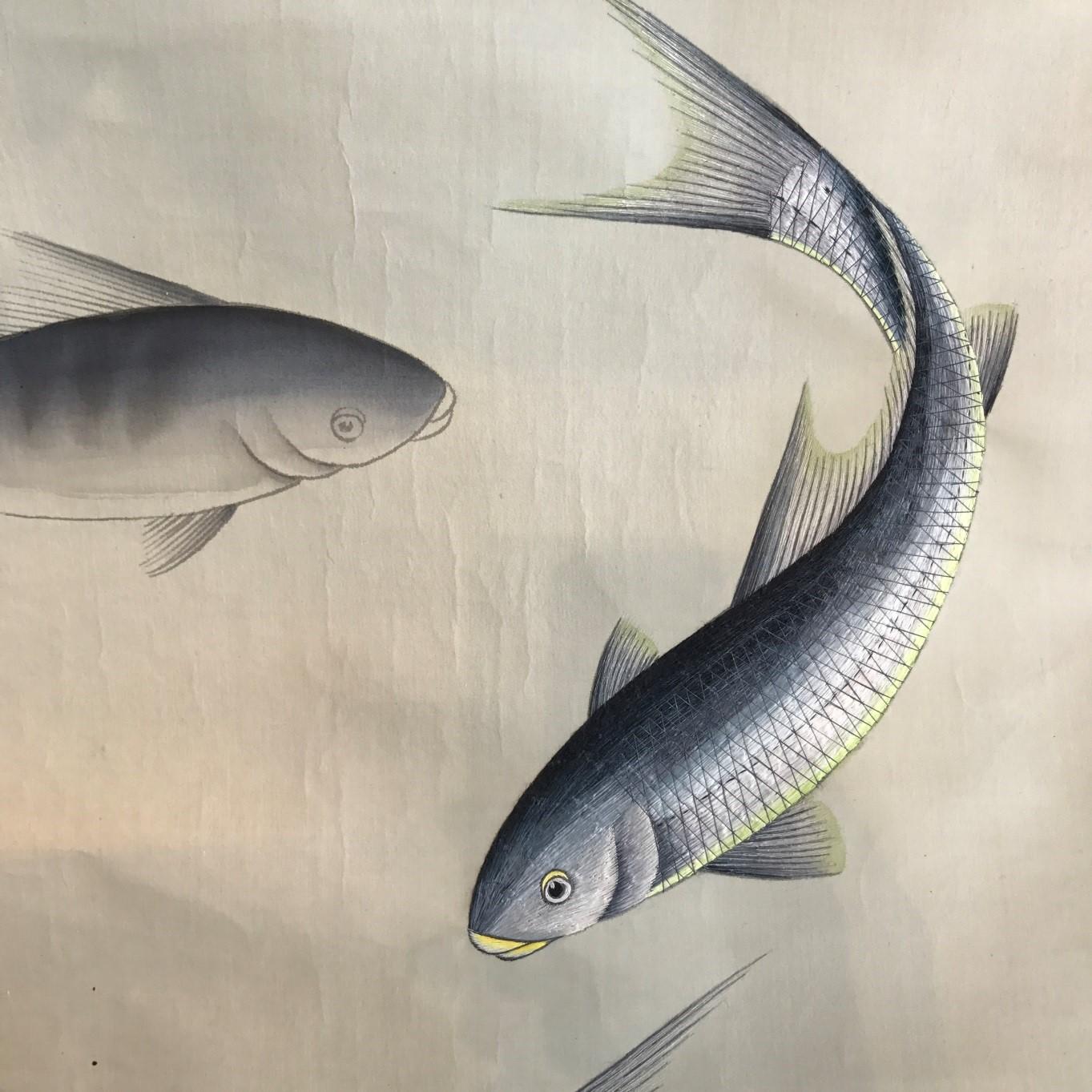fish on interior design pattern